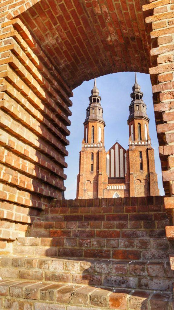 Katedra Opolska