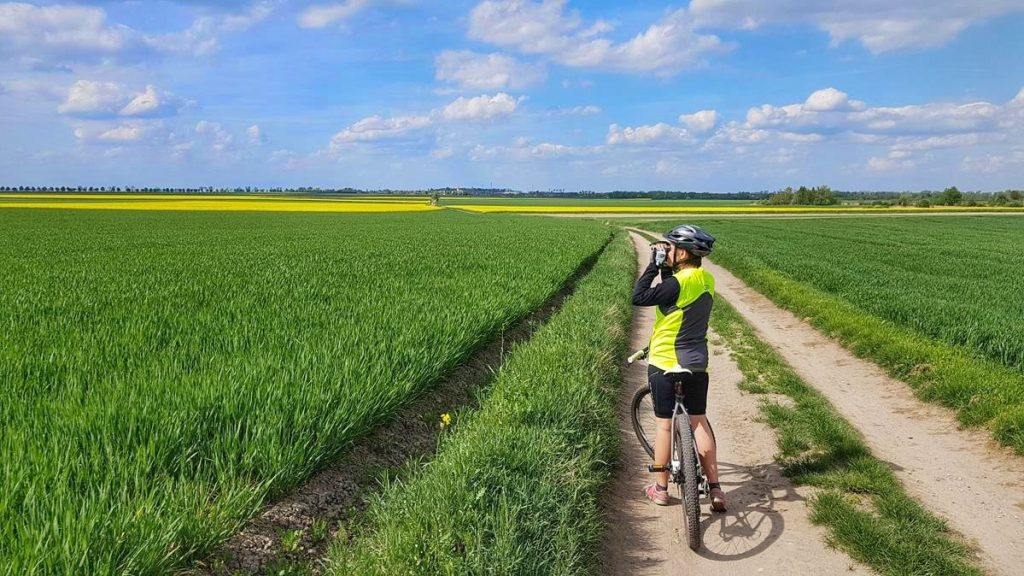 rowerowe wycieczki