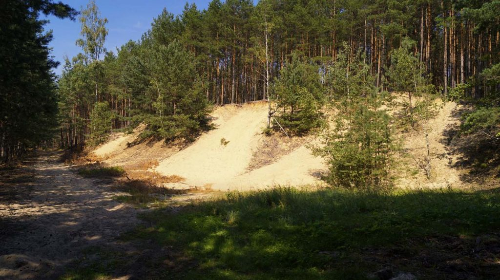 Wydmy - Stobrawski Park Krajobrazowy