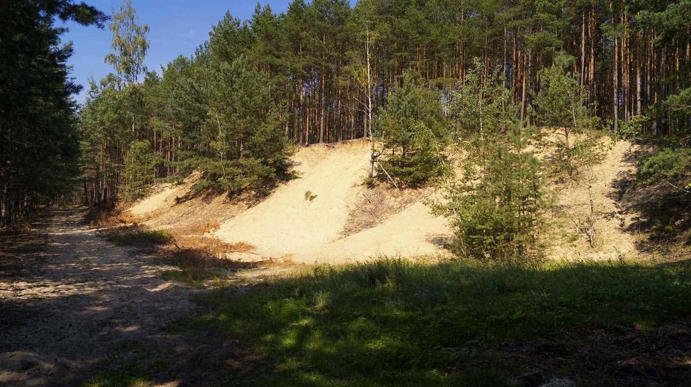 wydmy Stobrawski Park Krajobrazowy