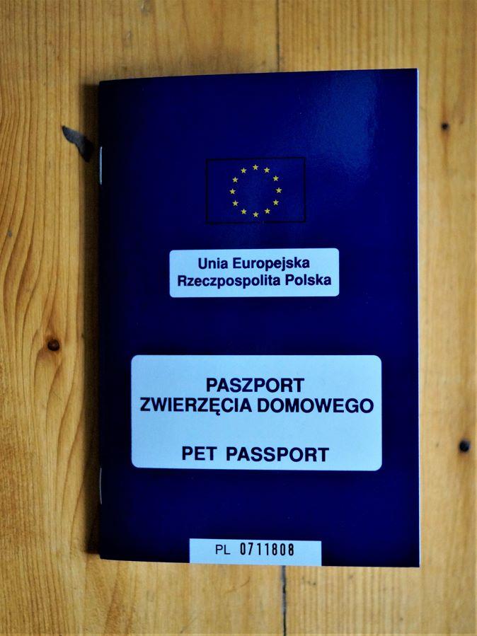 paszport zwierzęcia domowego