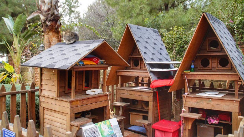 Park z kocimi domkami