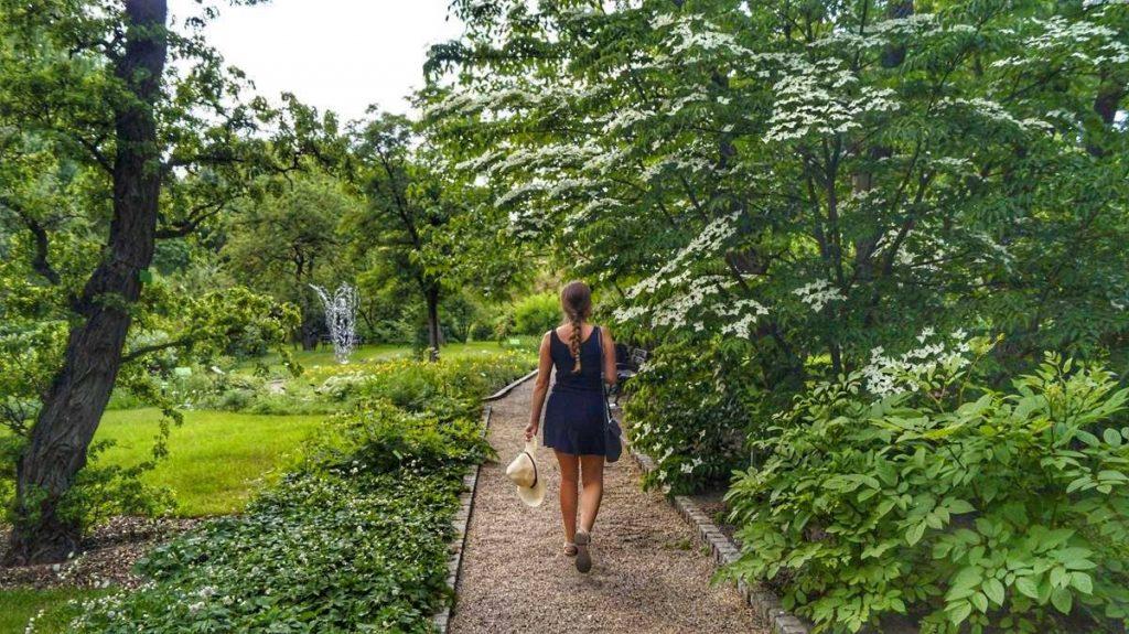 wrocław ogród botaniczny