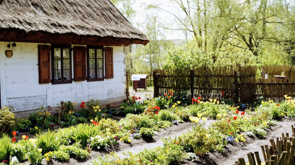 łódź ogród botaniczny SKANSEN