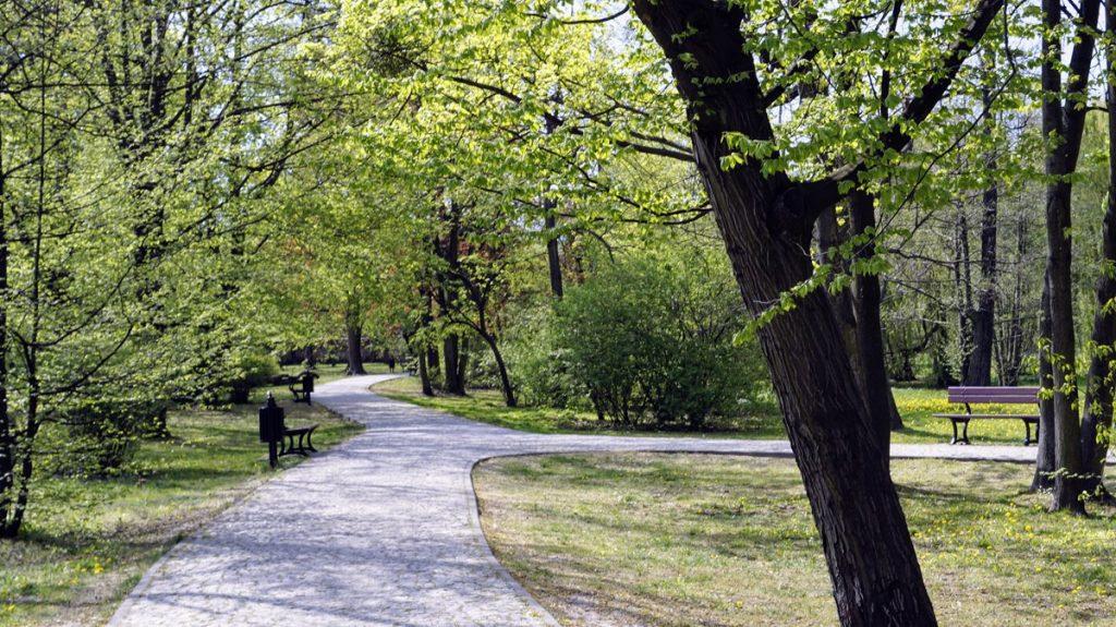 Park Źródliska w Łodzi
