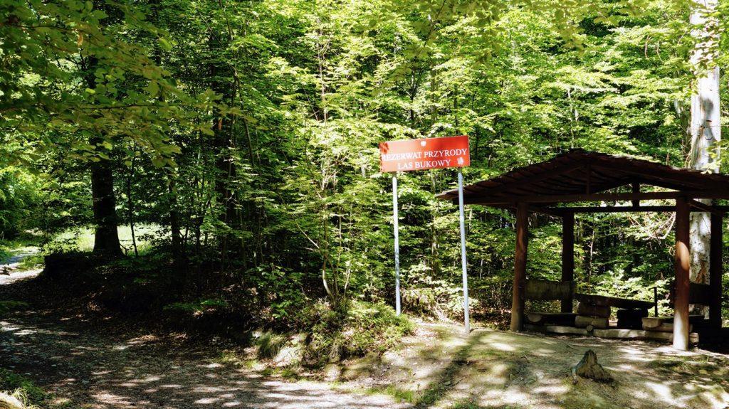 rezerwat przyrody opolskie