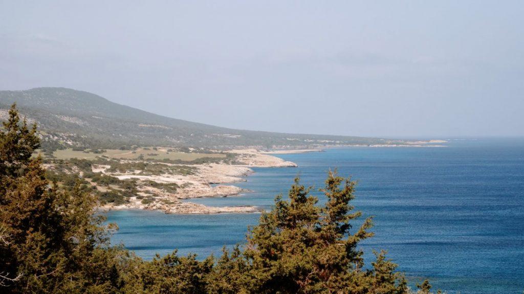 oświadczyny-Cypr