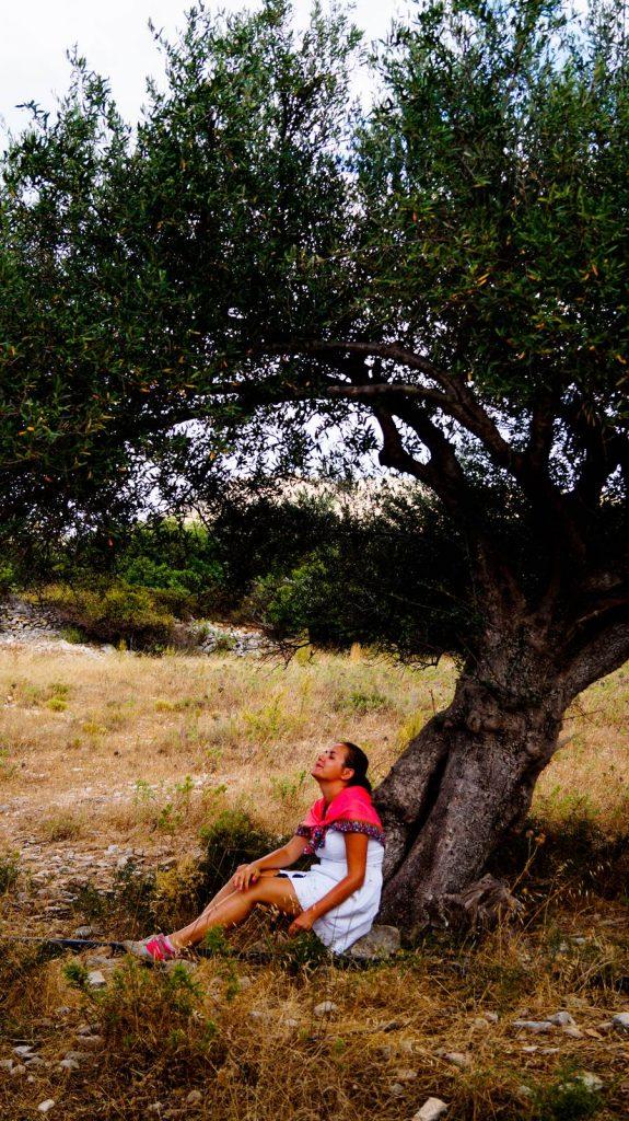 Pod drzewem oliwnym.