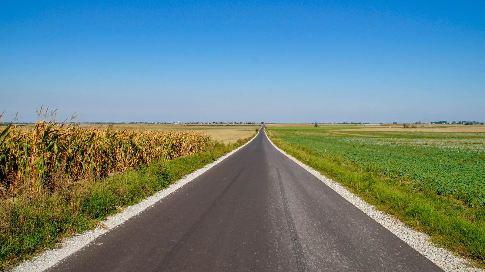 Michałów Pogorzela droga