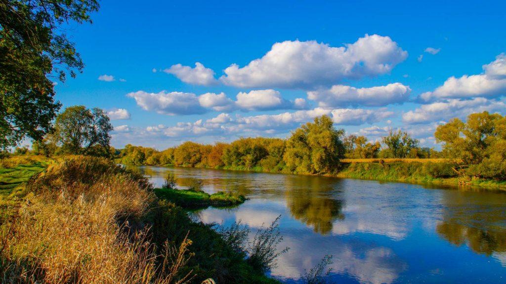 Odra rzeka