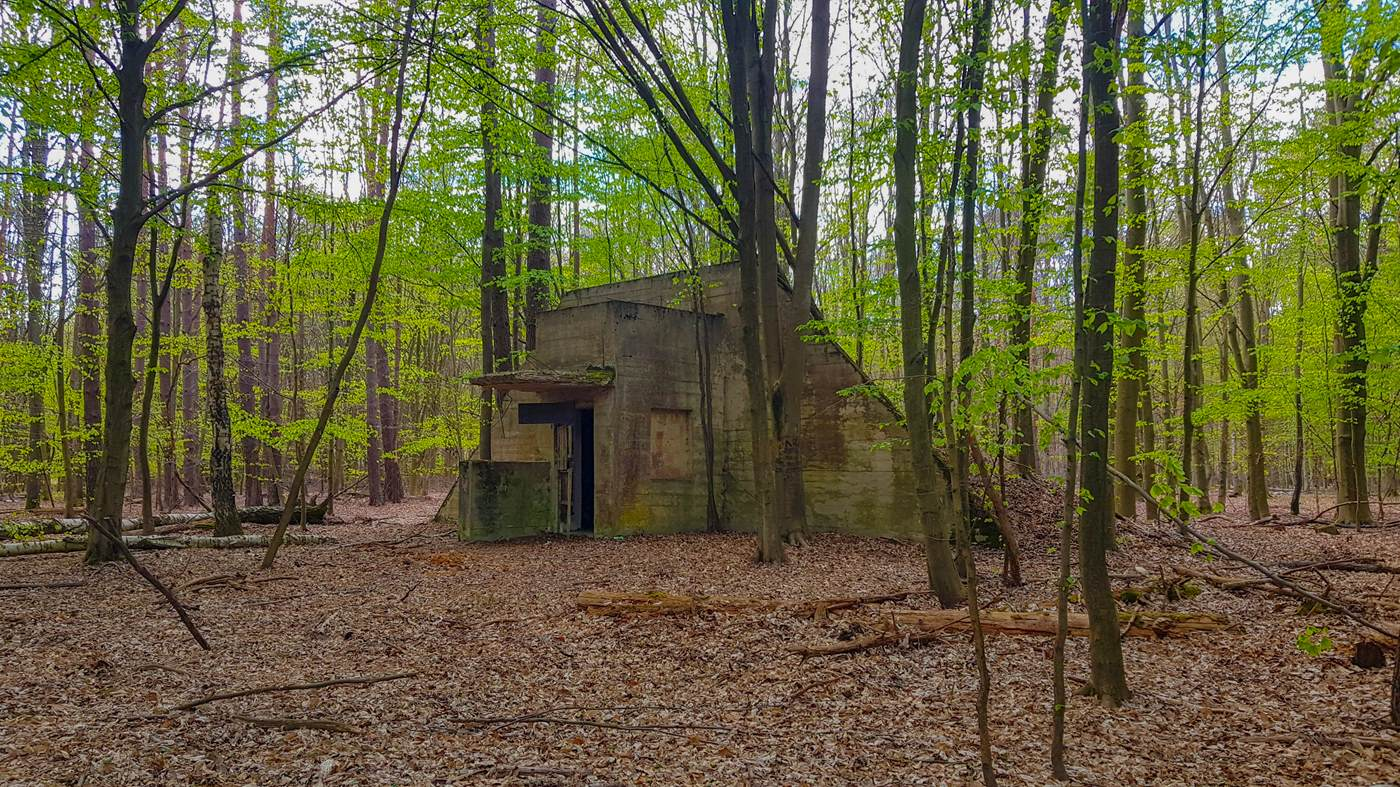 bunkier numer 5