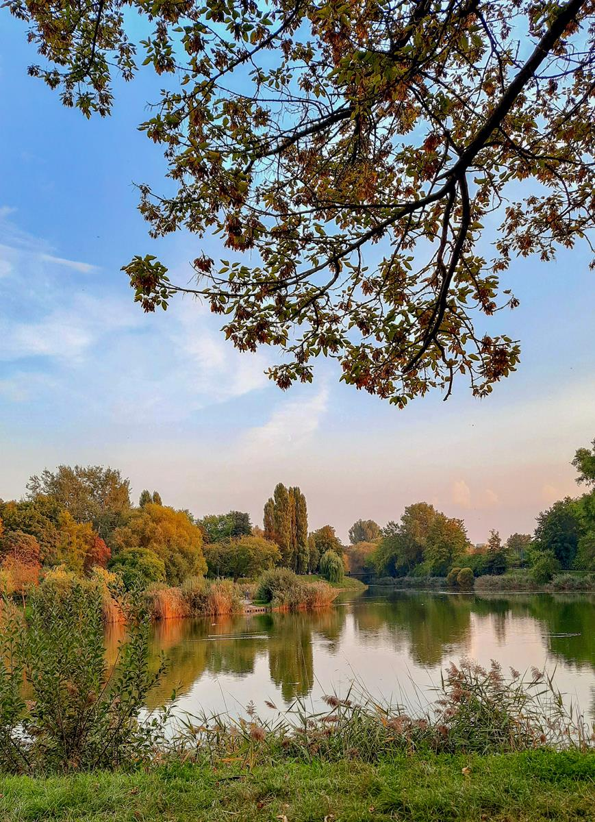 Park Szczesliwicki