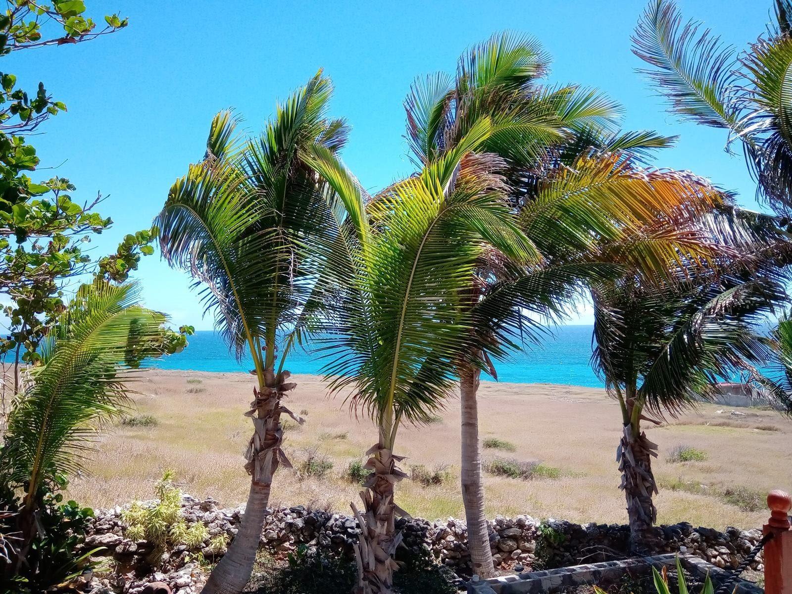 Widok z naszego tarasu Barbados